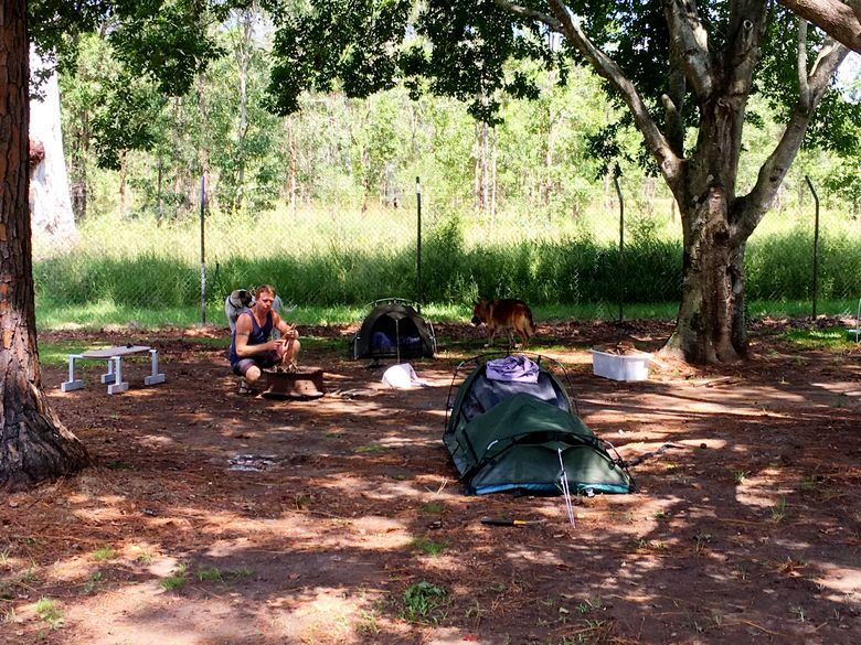 campsite with dogs and swags